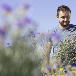 agriculteur-clement-fichot-champ-fleur