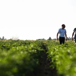 agriculteur-sebastien-clement-679x427